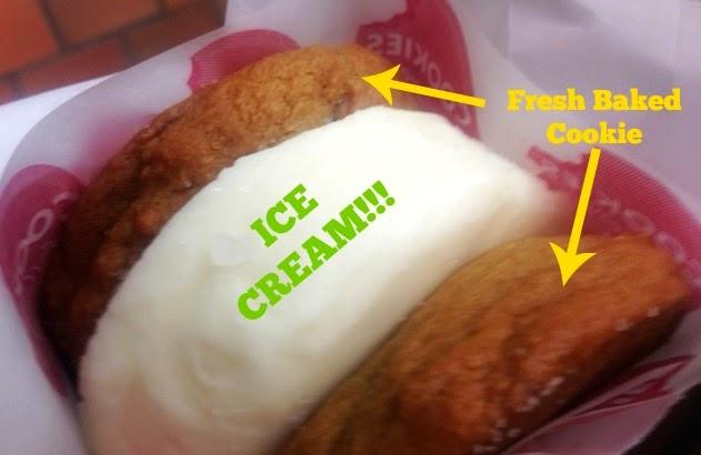 AMAZING Ice Cream Sandwhich
