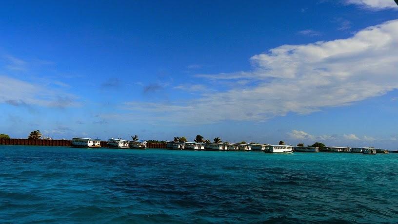 surfari maldivas aeropuerto male mar