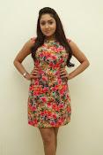 Anjana deshpande sizzling photos-thumbnail-19