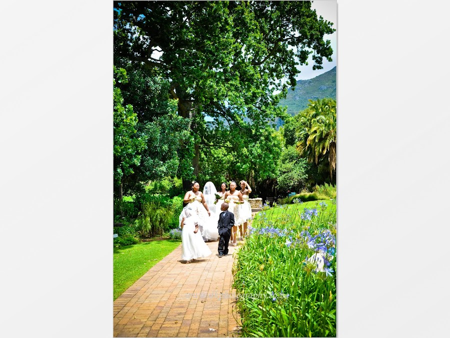 DK Photography Slideshow-1022 Noks & Vuyi's Wedding | Khayelitsha to Kirstenbosch  Cape Town Wedding photographer