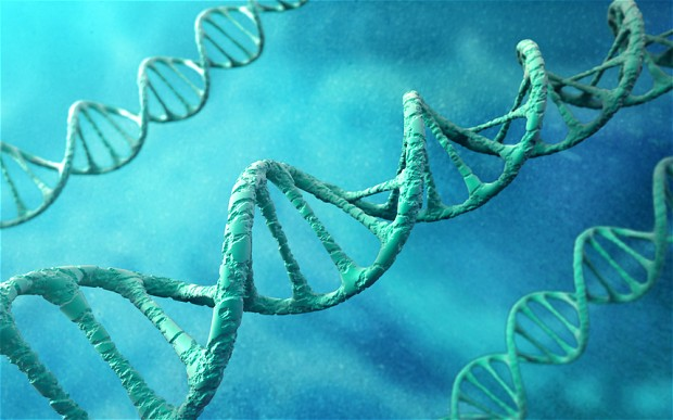 DNA Test Locations Perform Useful Social Functions World Wide