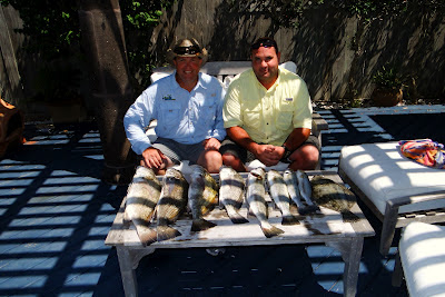 Land Cut Catches, Black Drum, Speckled Trout, JustGoFishin.com
