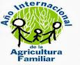 ANO INTERNACIONAL DA AGRICULTURA FAMILIAR
