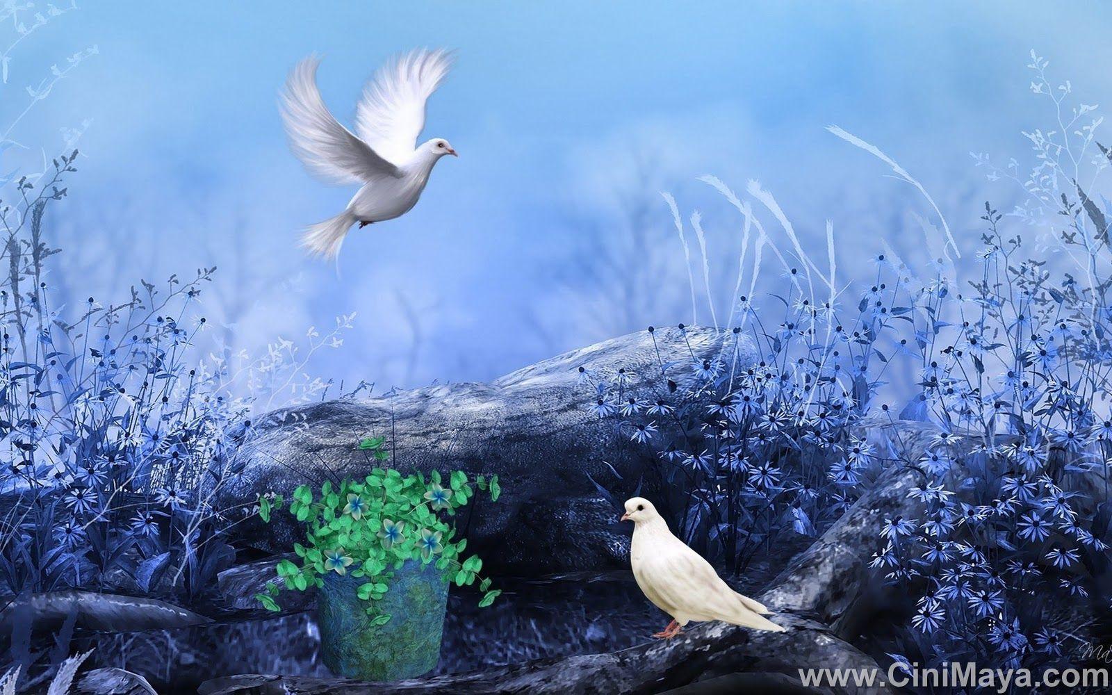 Hd wallpaper qmobile - Hd Nature Hd Wallpaper Beautiful Nature