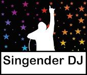 Der Singender DJ, Sänger/DJ