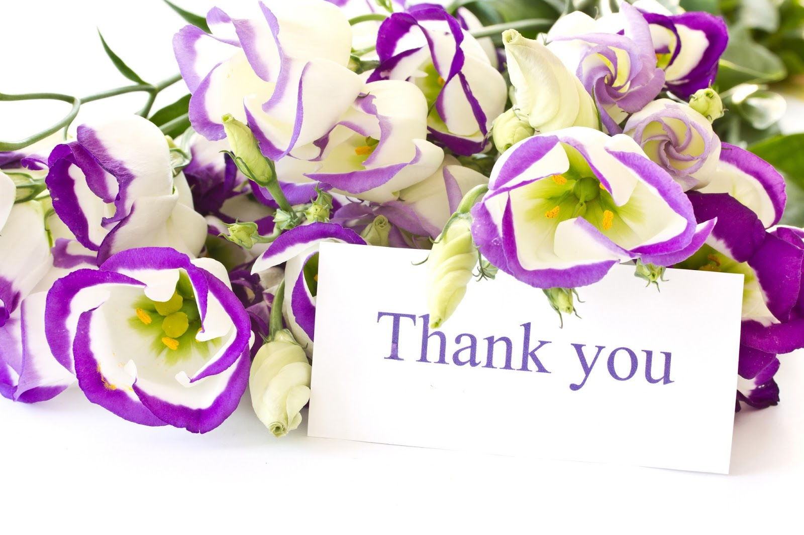 Thank You HD Pictures With Flowers