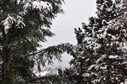 Schnee...