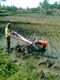 Penggunaan mesin traktor bantuan dari aspirasi Bapak Memo Hermawan Anggota DPRD Provinsi Jawa Barat
