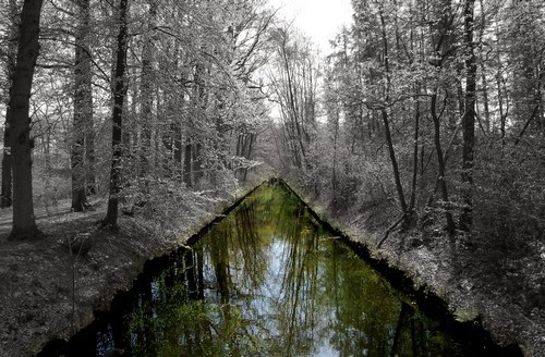 Nature stirs Wallpaper