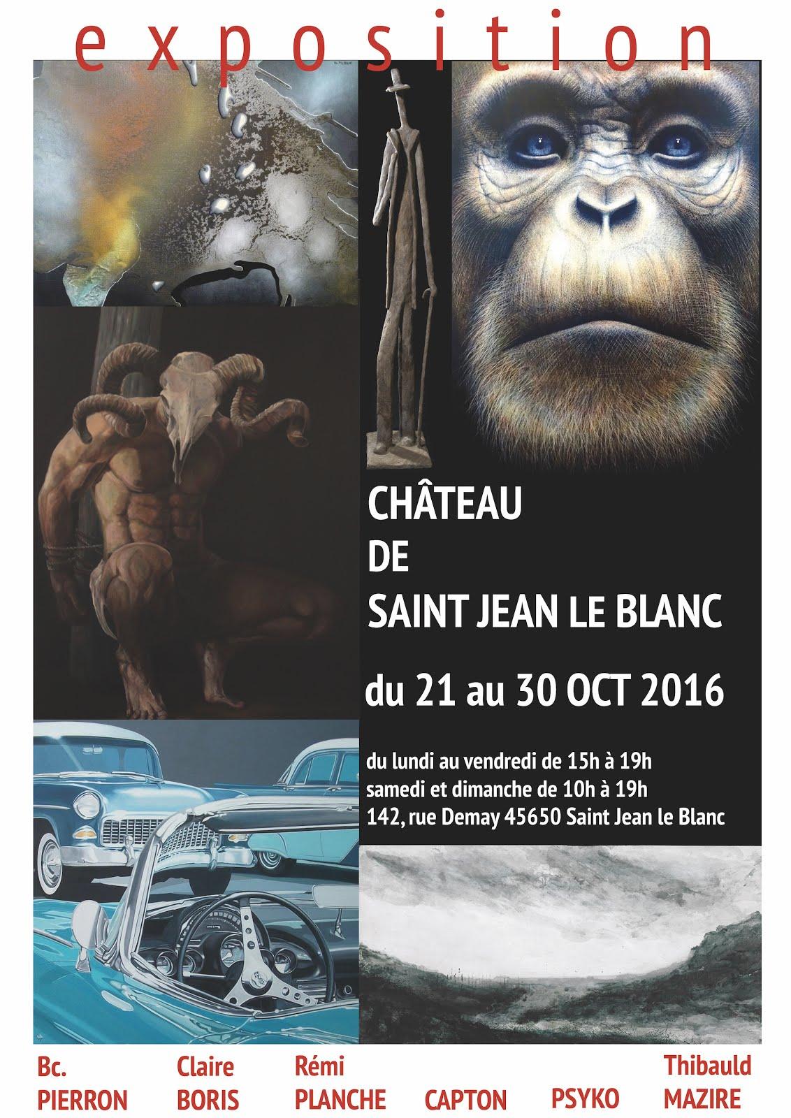 SAINT JEAN LE BLANC (LOIRET) : CAPTON, PSYKO, MAZIRE, BORIS, PIERRON ET PLANCHE EXPOSENT AU CHÂTEAU