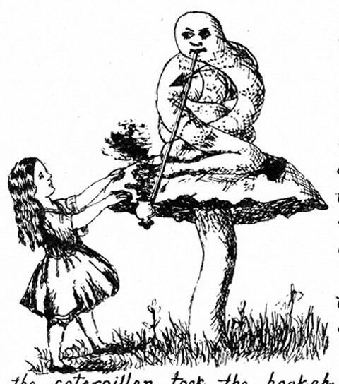 Рисунки Алиса в стране чудес