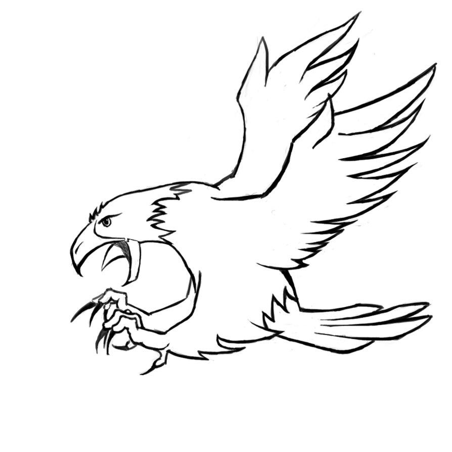 Mewarnai Gambar Burung Garuda Gambar Burung Elang Jawa Download Gambar Burung Elang Gambar