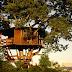 Cinco casas na árvore incríveis