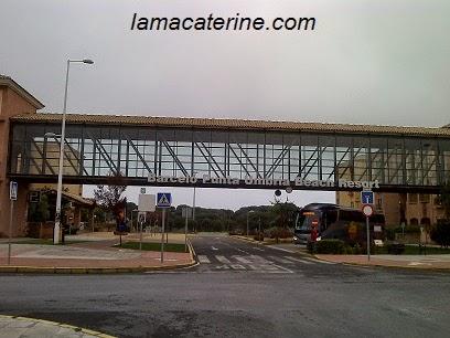 Visita al encuentro de bolillos de Carmona 2015