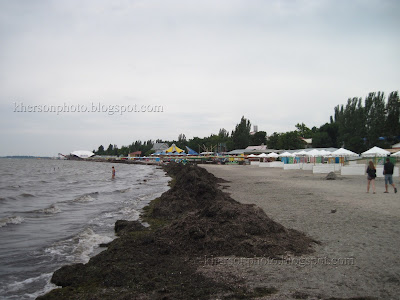 Скадовск, центральный пляж, берег моря