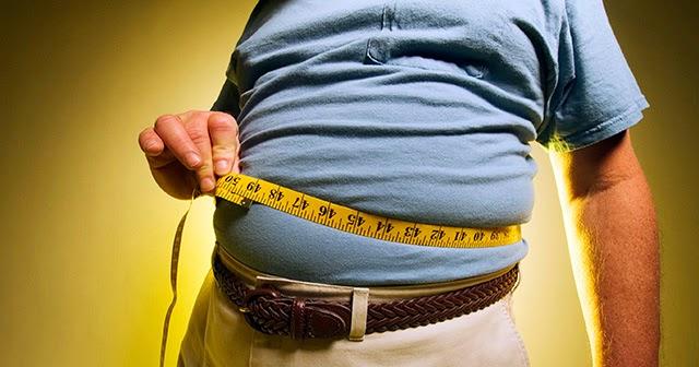 Estudios sobre obesidad