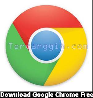 Download Google Chrome Versi Terbaru 2013