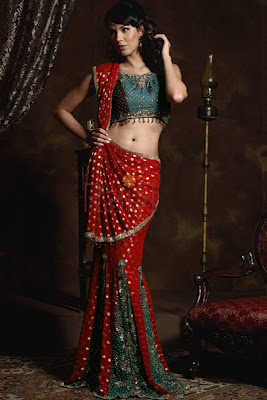 Blouse Back Designs - Choli Back Design Pictures
