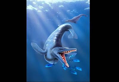 Argentina halla el fósil de ballena más antiguo del mundo 1011_tecnopolis_fosil_ballena_g7_tel.jpg_1121220956