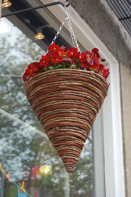 Hanging Flower Baskets Cone Shaped : Sprouts salem massachusetts flowers around town