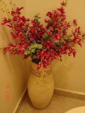 Orquídea Dançante