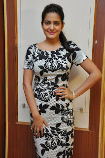 Vishakha Singh Latest Picture at Rowdy Fellow Release Date Press Meet ~ Celebs Next