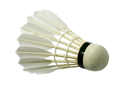 Badminton - Fauteuil en polycarbonate transparent ...
