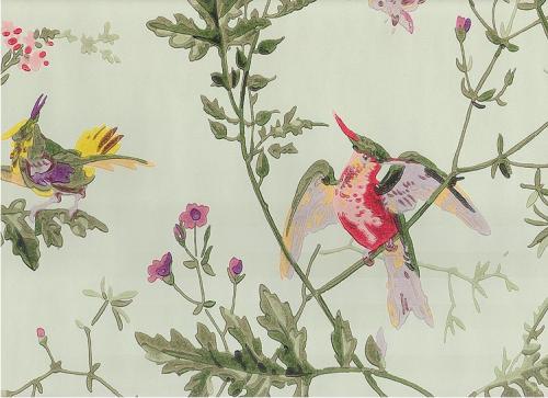 Rosen So Rot Hummingbird Wallpaper