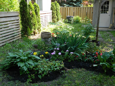 Mount Pleasant West garden clean up after  Paul Jung Gardening Services Toronto