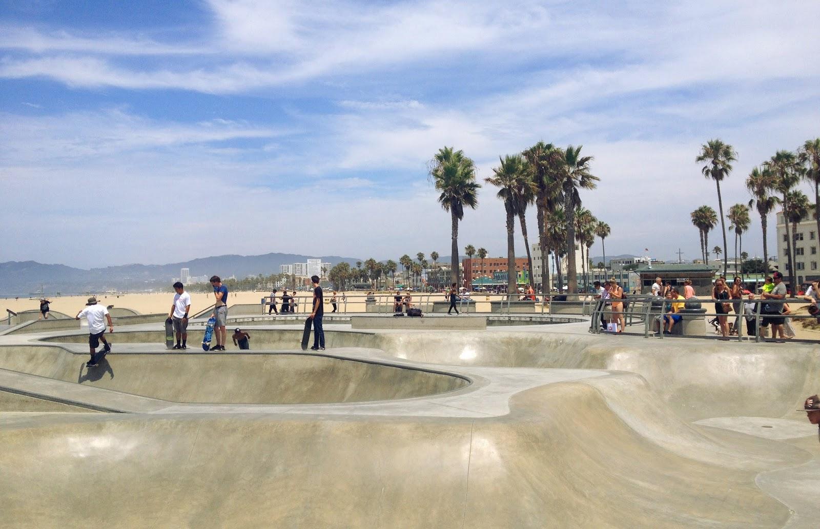 cozy birdhouse | venice beach skate park