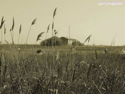 riserva Sentina