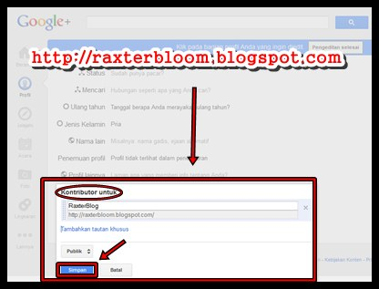 raxterbloom.blogspot.com