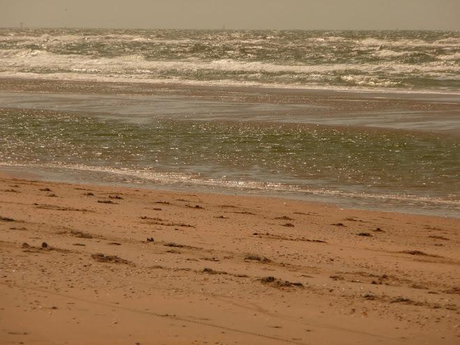 beach Heemskerk