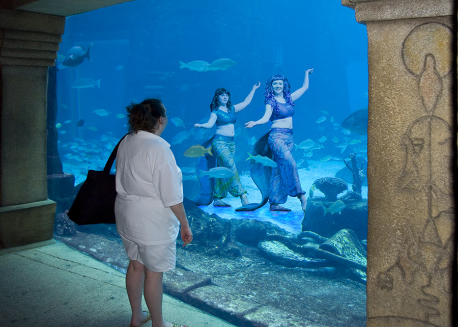 The Amazing World The Atlantis Paradise Island Paradise