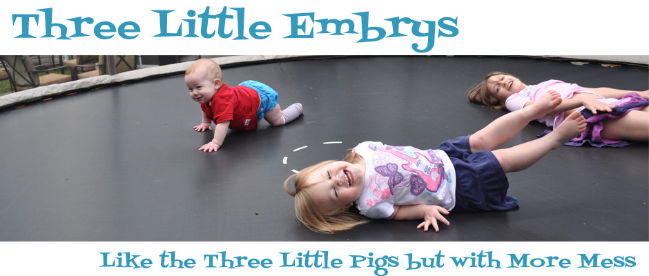 Three Little Embrys