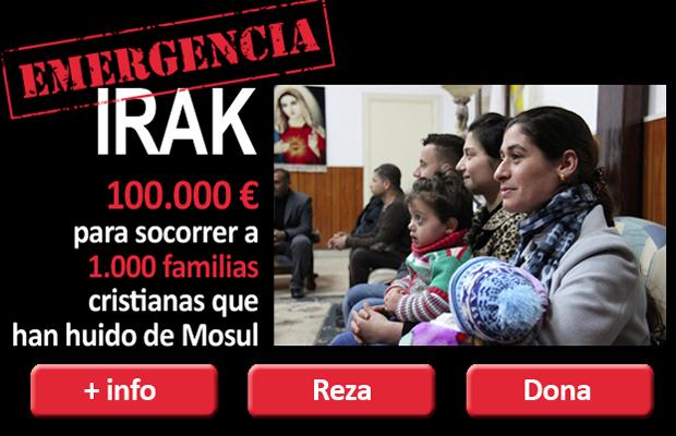 https://www.ain-es.org/fichaNoticias/detalleNoticia.aspx?identificador=2346