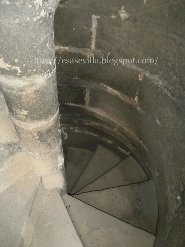 Esa Sevilla: Esa Sevilla visita las cubiertas de la Catedral