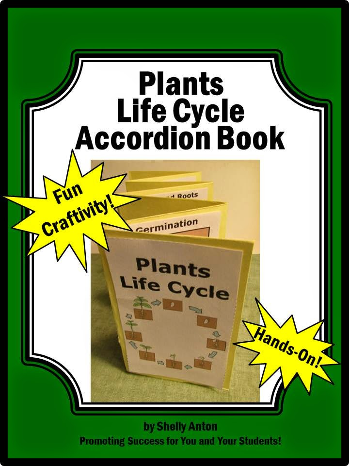 Plants Life Cycle Accordion Book