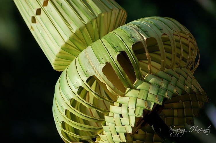 Janur (dari bahasa Jawa) adalah daun muda dari beberapa jenis palma ...