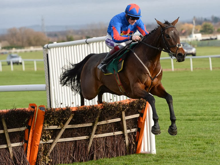 2014 Betfair Hurdle Winner: SPLASH OF GINGE Tipped Here At 66/1!