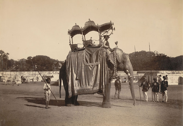 Elephant with golden howdah, Baroda - 1890