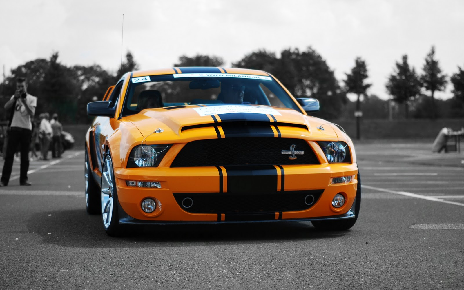 Ford Mustang Shelby Car