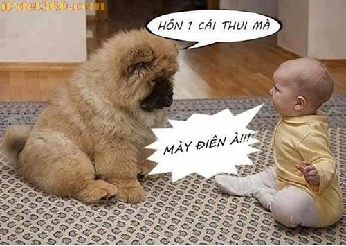 Cho hun cái coi...hình hài hước :)