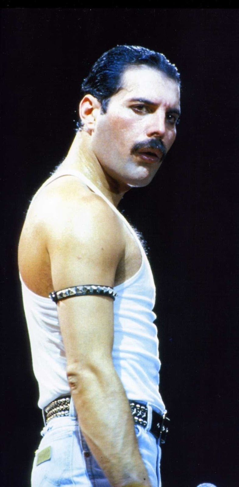 Freddie Mercury Hairstyle Men Hairstyles Men Hair