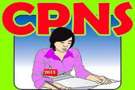 Situs Pendfataran Online CPNS 2013