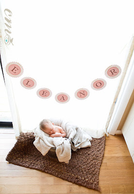 Baby Photo Props Party Banner