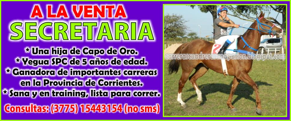 SECRETARIA - VENTA - 15.09.2014
