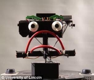 autisme, Erwin, Keepon, robot, Robot emosi, sindrom Asperger, technology, unique