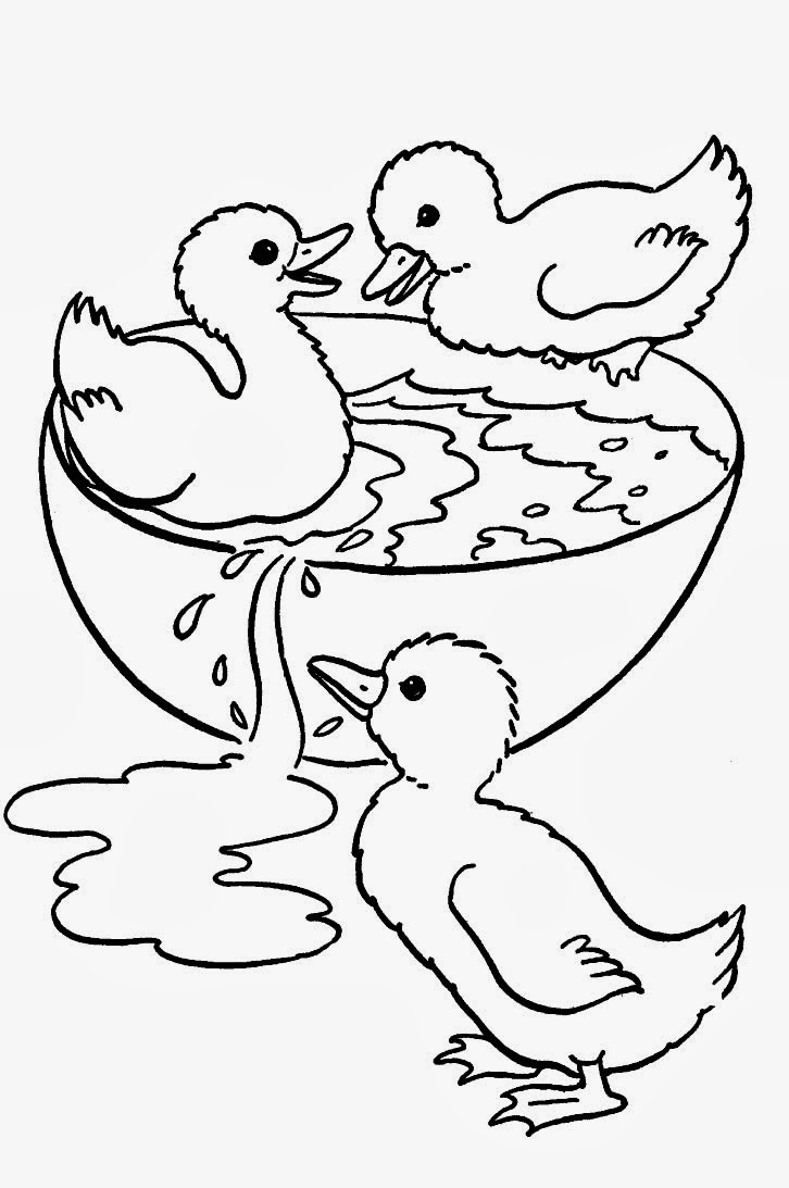 desenho de filhotes de patos para colorir desenhos para colorir