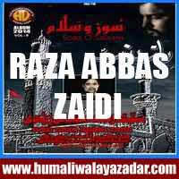 http://ishqehaider.blogspot.com/2013/11/raza-abbas-zaidi-nohay-2014.html